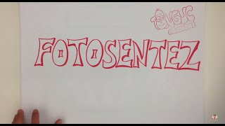 Download 8.2 7dk'da FOTOSENTEZ Video