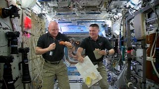 Download Thanksgiving 2015 on the International Space Station Video