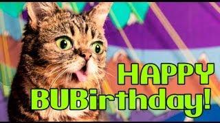 Download Lil BUBIRTHDAY: BUB Turns 2! Video