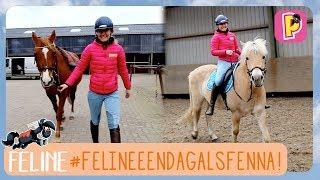 Download Feline een dag als Fenna! | Feline | PennyTV Video