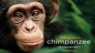 Download Chimpanzee - UK Trailer - Official Disney | HD Video