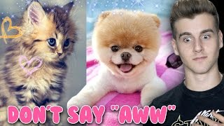 Download Try Not To Say ″Aww″ (Impossible Challenge) Video