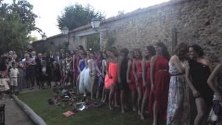 Download boda Video