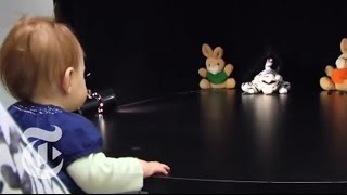 Download Magazine - Can Babies Tell Right From Wrong? | The New York Times Video