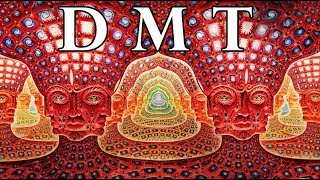 Download DMT: Portal to the Spirit World Video