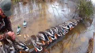 Download Duck Hunt Virginia North Carolina Video