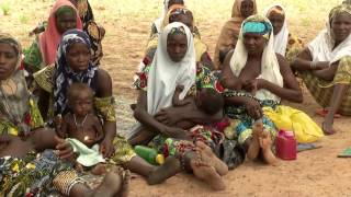 Download Desnutrición, sequía y hambre, la silenciosa crisis que golpea Nigeria Video