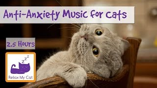 Download Anti-Anxiety Music for Cats and Kittens! Soothe your Cat with our Relaxation Music! 🐱 #ANXIETY05 Video