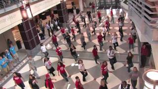Download Flash Mob at the Ohio Union 5/3/2010 - The Ohio State University Video