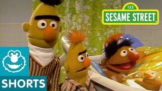 Download Sesame Street: Bert And Ernie Water Sports Video
