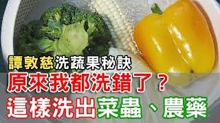 Download 【挖健康】原來我都洗錯了!「譚敦慈洗蔬果秘訣」這樣洗出菜蟲農藥 Video