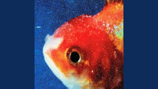Download Big Fish Video