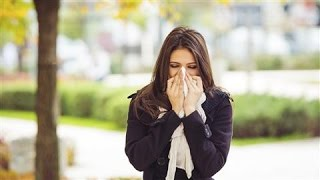 Download Want to Avoid Getting the Flu? Take an 'Unsick Day' Video