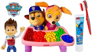 Download Paw Patrol Skye Chases Baby Puppies Eat Colorful M&M's Toys Learning Colors for Children Video