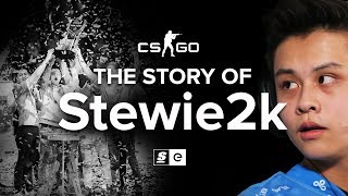 Download The Story Of Stewie2k: From Pug-Star to Superstar Video
