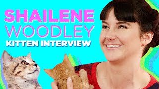 Download Shailene Woodley Plays With Kittens (While Answering Fan Questions) Video