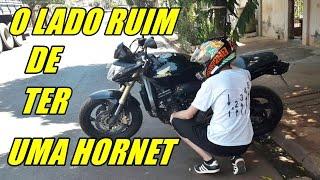 Download O LADO RUIM DE TER UMA HORNET ! Video