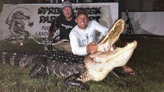 Download Massive Alligator {HUNT CLEAN COOK} Complete Video! GOURMET!!! Video