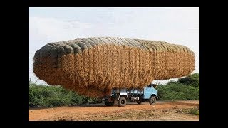 Download Unbelievable Crazy Amazing Agriculture Heavy Equipment Video