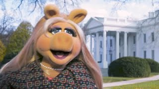 Download Miss Piggy Goes To Washington | The Muppets Video