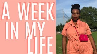 Download A Week in My Life: Racial Profiling at Sephora + Nigerian Independence Part One | CeCe Olisa Video