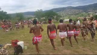 Download Sbusiso and Mukelisiwe full traditional wedding video 19/11/2016 Video