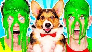 Download Dogs Pick our Mystery Slime Challenge 2 & How to Make the Best Funny DIY Orbeez Switch Up Game Video