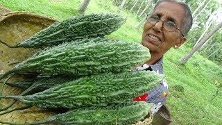 Download Bitter Gourd Masala Curry ❤ Healthy Village Food by Grandma | Village Life Video