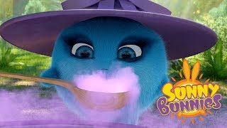 Download Videos For Kids | BUNNY WITCHES | SUNNY BUNNIES | Funny Videos For Kids Video