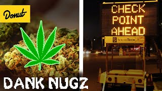 Download How You Can Get a DUI on Weed   WheelHouse Video