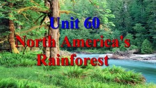 Download Unit 60 North America's Rainforest | Learn English via Listening Level 4 Video