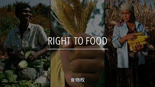Download FAO 政策系列: 食物权(带字幕) Video