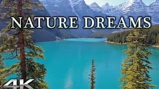 Download NATURE DREAMS in 4K | 1HR Healing Relaxation Experience w Music in UHD Video