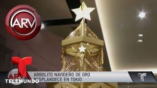 Download Arbolito navideño de oro resplandece en Tokio | Al Rojo Vivo | Telemundo Video