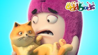 Download Oddbods | CAT CATASTROPHE | NEW FULL EPISODES | Cartoon | Funny Cartoons For Children | Oddbods Show Video