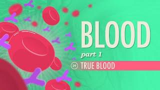Download Blood, Part 1 - True Blood: Crash Course A&P #29 Video