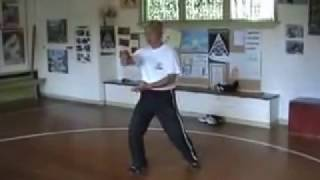 Download Wee Kee Jin, 37 forms yang style taiji. Video