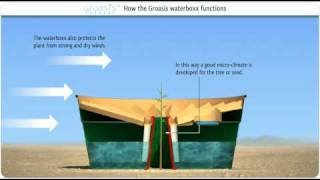 Download How does the Groasis Waterboxx plant cocoon work against desertification? Video
