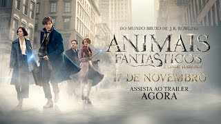 Download Animais Fantásticos e Onde Habitam - Trailer Final (leg) [HD] Video