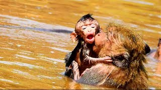 Download Poor new baby! New baby nearly drown in the water| Why mum bring baby into water? so pity on baby Video