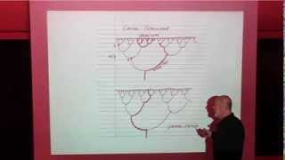 Download Fractal Flows and the Arrow of Time   Leonard Susskind Video