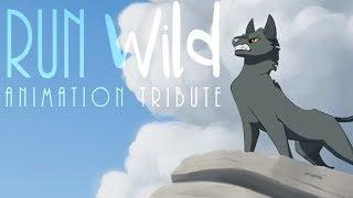 Download Run Wild // Animation Tribute Video