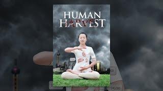 Download Human Harvest Video