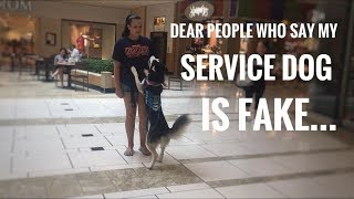 Download Someone told me to fake my service dog!? Video