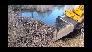 Download BEAVER DAM REMOVAL Video