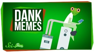 Download The Science of Dank Memes Video