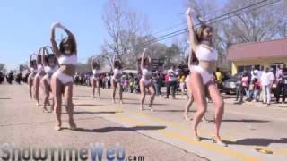 Download Dancing Dolls of Southern University - 2017 Mardi Gras Parade Video