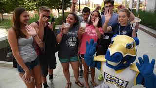 Download University of New Haven Move-In Day 2017 Video