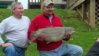 Download Missouri Record Fish Stories - Brown Trout Video