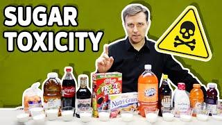 Download Sugar Toxicity Video